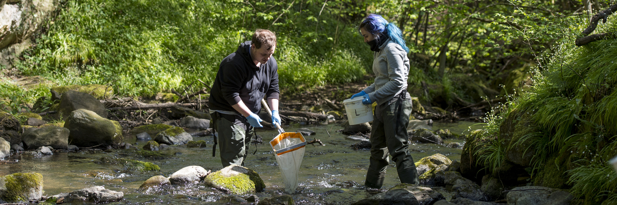 Two students collecting aquatic samples on a field trip