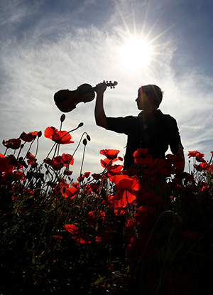 Violinist and poppies