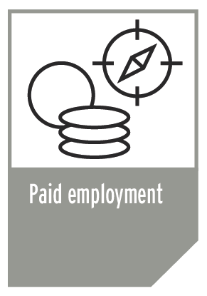 Paid employment info graphic